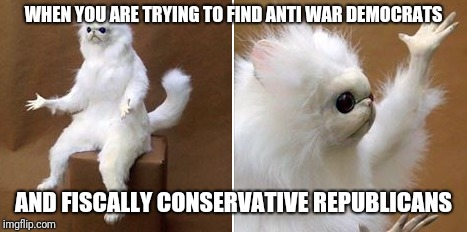 Anti democan republican | WHEN YOU ARE TRYING TO FIND ANTI WAR DEMOCRATS AND FISCALLY CONSERVATIVE REPUBLICANS | image tagged in libertarian | made w/ Imgflip meme maker
