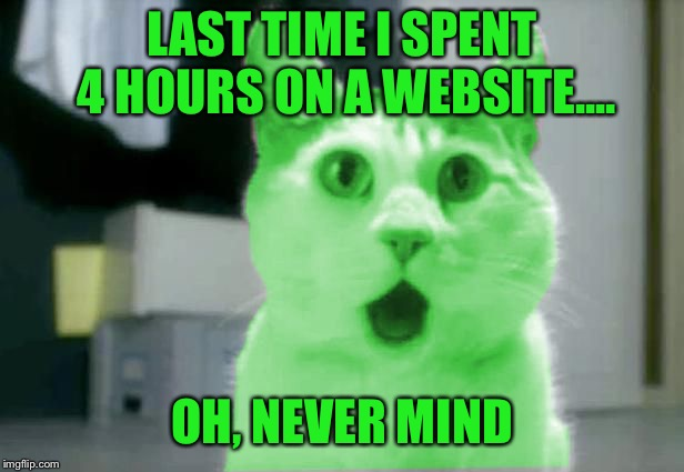 OMG RayCat | LAST TIME I SPENT 4 HOURS ON A WEBSITE.... OH, NEVER MIND | image tagged in omg raycat | made w/ Imgflip meme maker
