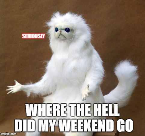 Weekend goes poof | SERIOUSLY WHERE THE HELL DID MY WEEKEND GO | image tagged in weekend,poof,aaaaand its gone | made w/ Imgflip meme maker