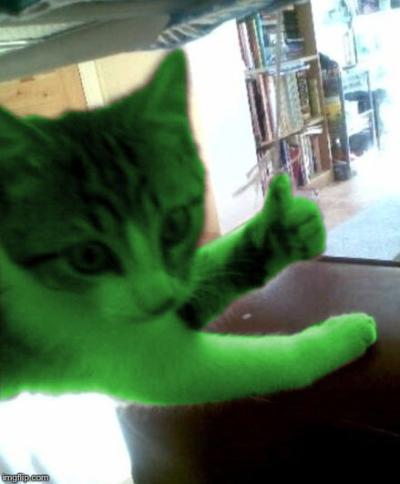 thumbs up RayCat | :) | image tagged in thumbs up raycat | made w/ Imgflip meme maker