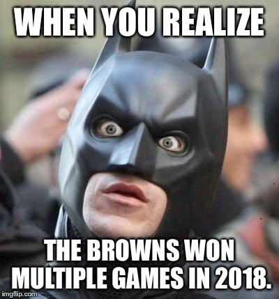 Holy smokes Batman, the Browns won more than once | WHEN YOU REALIZE THE BROWNS WON MULTIPLE GAMES IN 2018. | image tagged in shocked batman,memes,cleveland browns,nfl football,games,2018 | made w/ Imgflip meme maker