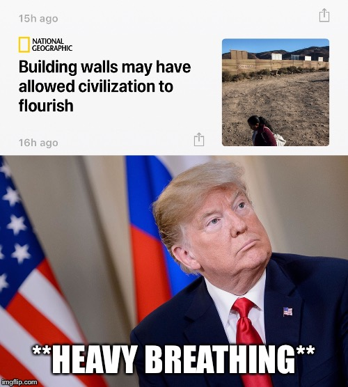 Build a wall | **HEAVY BREATHING** | image tagged in trump,donald trump,president trump,trump wall | made w/ Imgflip meme maker