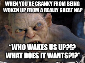 "Gollum lord of the rings | WHEN YOU'RE CRANKY FROM BEING WOKEN UP FROM A REALLY GREAT NAP ""WHO WAKES US UP?!? WHAT DOES IT WANTS?!?"" 