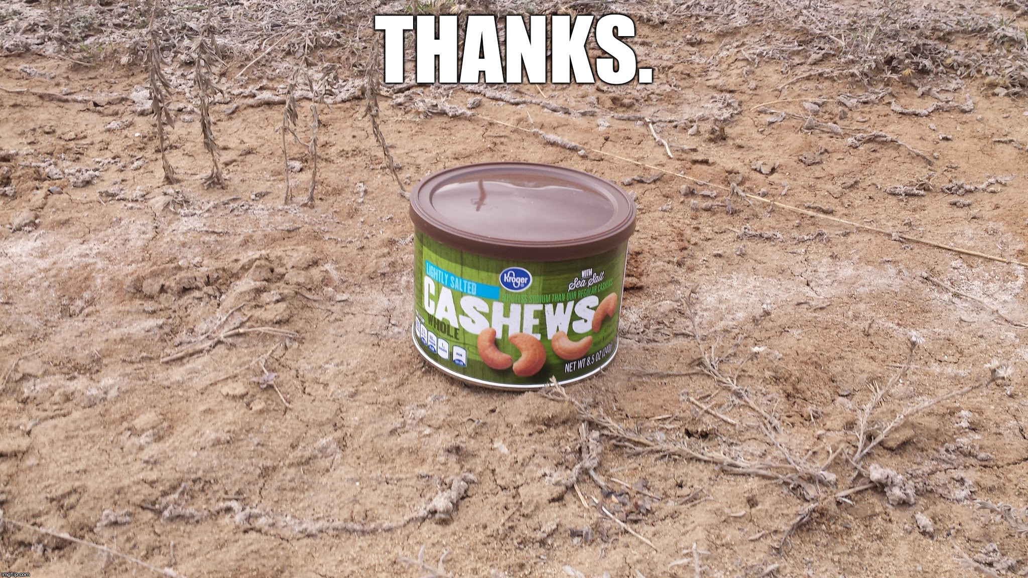 Cashew outside | THANKS. | image tagged in cashew outside | made w/ Imgflip meme maker