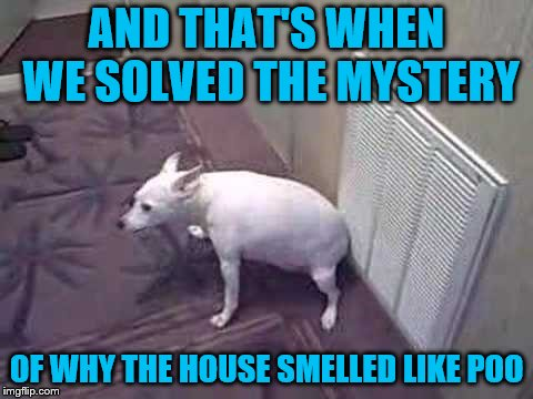 Bad Itchy Puppy | AND THAT'S WHEN WE SOLVED THE MYSTERY OF WHY THE HOUSE SMELLED LIKE POO | image tagged in memes,dogs,itchy butt,air return grille,bad smell | made w/ Imgflip meme maker