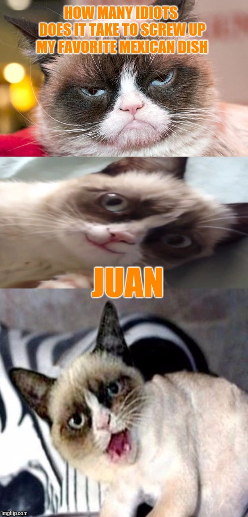 Grumpy Cat Weekend (A Socrates and Craziness_all_the_way_event) | HOW MANY IDIOTS DOES IT TAKE TO SCREW UP MY FAVORITE MEXICAN DISH JUAN | image tagged in bad pun grumpy cat,memes,funny,grumpy cat weekend | made w/ Imgflip meme maker