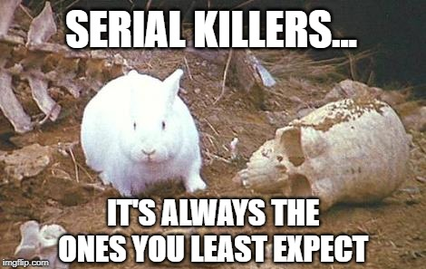 SURPRISE!!!  |  SERIAL KILLERS... IT'S ALWAYS THE ONES YOU LEAST EXPECT | image tagged in monty python rabbit,serial killer,bunny,danger | made w/ Imgflip meme maker