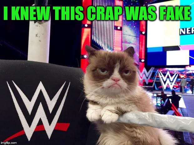 Close-up view (A socrates and Craziness_all_the_way event. Oct 5th-8th) | I KNEW THIS CRAP WAS FAKE | image tagged in wwwe grumpy cat,memes,wrestling,fake,grumpy cat weekend | made w/ Imgflip meme maker