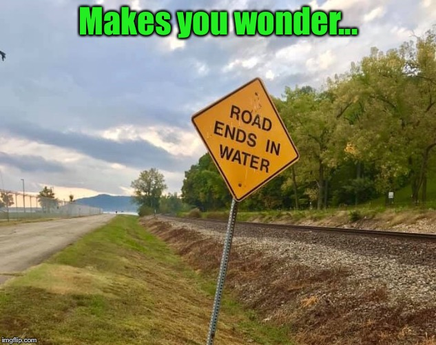Stupid signs..... | Makes you wonder... | image tagged in signs,funny signs,who makes these,water,river,ocean | made w/ Imgflip meme maker