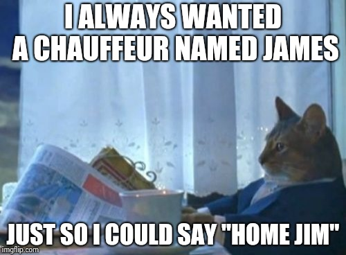 "I Should Buy A Boat Cat Meme | I ALWAYS WANTED A CHAUFFEUR NAMED JAMES JUST SO I COULD SAY ""HOME JIM"" 