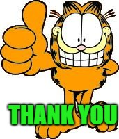 thumbs up | THANK YOU | image tagged in thumbs up | made w/ Imgflip meme maker