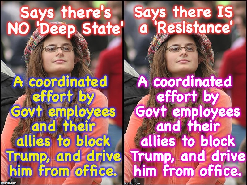 What's in a name? that which we call a rose, would smell.... | A coordinated effort by Govt employees and their allies to block Trump, and drive him from office. | image tagged in deep state,resistance | made w/ Imgflip meme maker