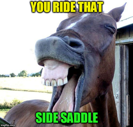 YOU RIDE THAT SIDE SADDLE | made w/ Imgflip meme maker