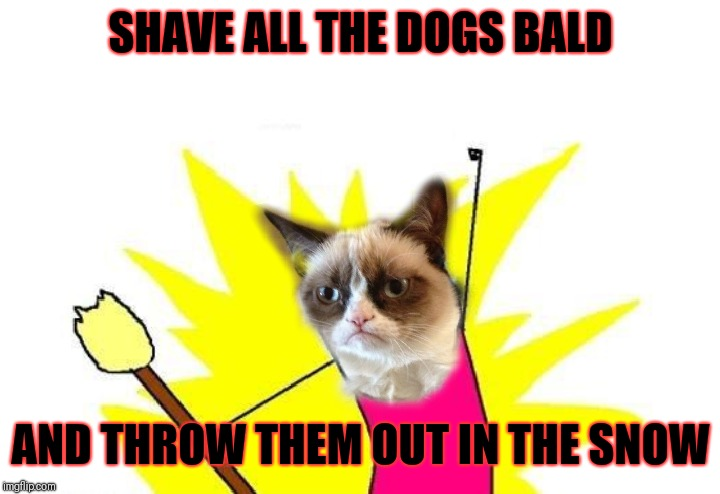 Grumpy Cat Weekend (A Socrates and Craziness_All_the_way event) | SHAVE ALL THE DOGS BALD AND THROW THEM OUT IN THE SNOW | image tagged in memes,x all the y,funny,pets,grumpy cat weekend | made w/ Imgflip meme maker