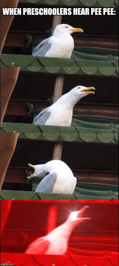 Inhaling Seagull |  WHEN PRESCHOOLERS HEAR PEE PEE: | image tagged in memes,inhaling seagull | made w/ Imgflip meme maker