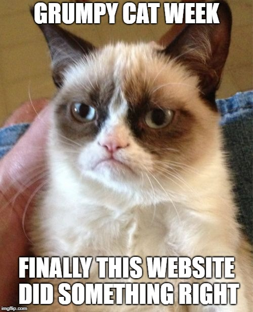 Grumpy Cat | GRUMPY CAT WEEK FINALLY THIS WEBSITE DID SOMETHING RIGHT | image tagged in memes,grumpy cat,ssby,grumpy cat week | made w/ Imgflip meme maker