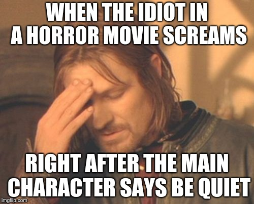 Frustrated Boromir Meme | WHEN THE IDIOT IN A HORROR MOVIE SCREAMS RIGHT AFTER THE MAIN CHARACTER SAYS BE QUIET | image tagged in memes,frustrated boromir | made w/ Imgflip meme maker