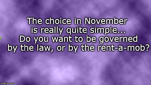 Blank purple  | The choice in November is really quite simple... Do you want to be governed by the law, or by the rent-a-mob? | image tagged in blank purple | made w/ Imgflip meme maker