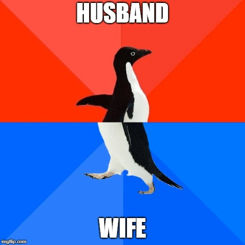 Socially Awesome Awkward Penguin Meme | HUSBAND WIFE | image tagged in memes,socially awesome awkward penguin | made w/ Imgflip meme maker
