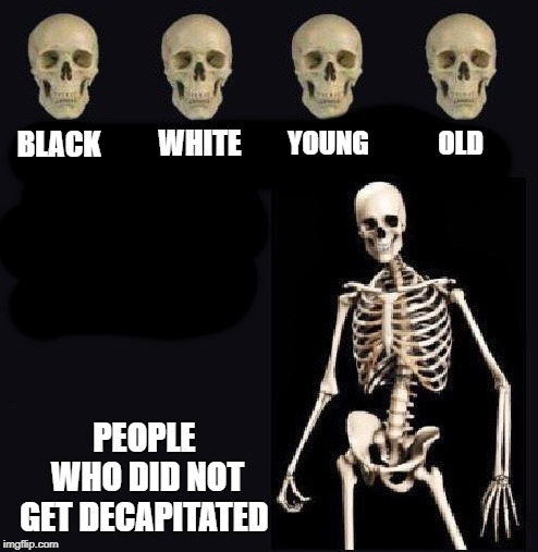 we are all the same inside | BLACK PEOPLE WHO DID NOT GET DECAPITATED WHITE YOUNG OLD | image tagged in skull,skeleton | made w/ Imgflip meme maker
