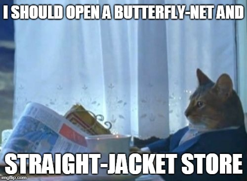 I Should Buy A Boat Cat Meme | I SHOULD OPEN A BUTTERFLY-NET AND STRAIGHT-JACKET STORE | image tagged in memes,i should buy a boat cat | made w/ Imgflip meme maker