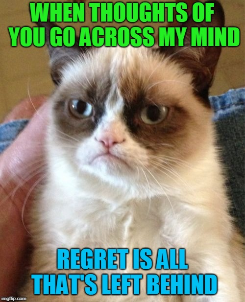 Grumpy Cat Meme | WHEN THOUGHTS OF YOU GO ACROSS MY MIND REGRET IS ALL THAT'S LEFT BEHIND | image tagged in memes,grumpy cat | made w/ Imgflip meme maker