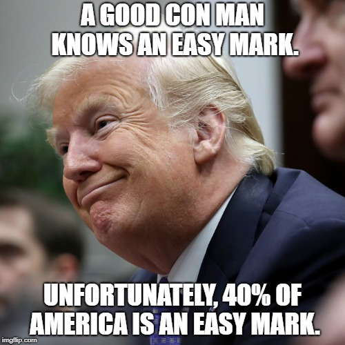 Don the Con | A GOOD CON MAN KNOWS AN EASY MARK. UNFORTUNATELY, 40% OF AMERICA IS AN EASY MARK. | image tagged in donald trump | made w/ Imgflip meme maker