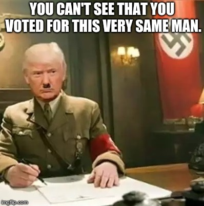 Hitler's regime started in a surprisingly similar way - |  YOU CAN'T SEE THAT YOU VOTED FOR THIS VERY SAME MAN. | image tagged in donald trump hitler | made w/ Imgflip meme maker