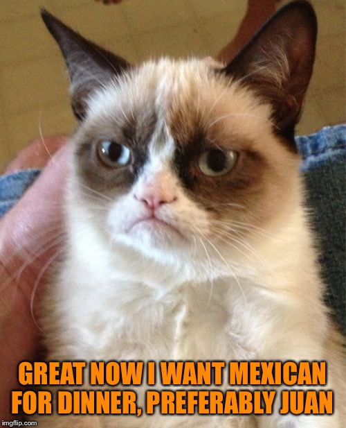 Grumpy Cat Meme | GREAT NOW I WANT MEXICAN FOR DINNER, PREFERABLY JUAN | image tagged in memes,grumpy cat | made w/ Imgflip meme maker