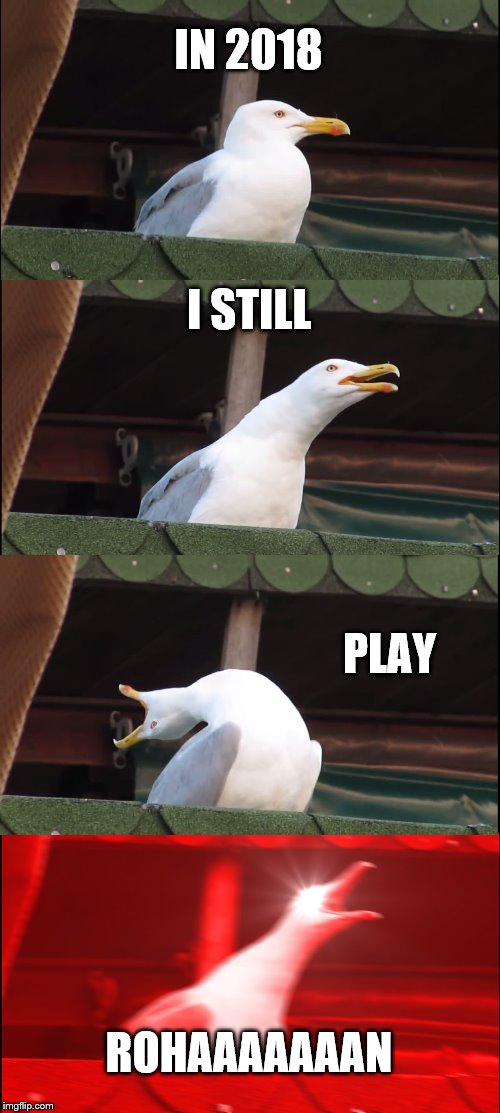 Inhaling Seagull Meme |  IN 2018; I STILL; PLAY; ROHAAAAAAAN | image tagged in memes,inhaling seagull | made w/ Imgflip meme maker