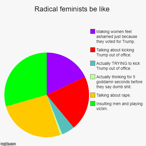 FAMANAST | Radical feminists be like | Insulting men and playing victim., Talking about **pe., Actually thinking for 5 go***mn seconds before they say  | image tagged in funny,pie charts,political,sad,trump,donald trump | made w/ Imgflip pie chart maker