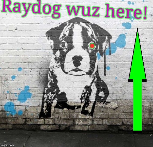 . Raydog wuz here! | made w/ Imgflip meme maker