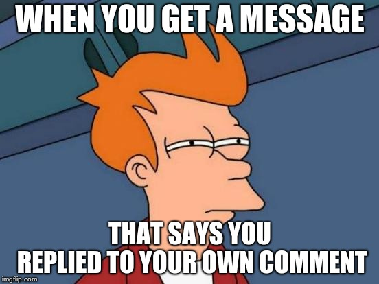 It said 'memes4theworld replied to your comment'.  |  WHEN YOU GET A MESSAGE; THAT SAYS YOU REPLIED TO YOUR OWN COMMENT | image tagged in memes,futurama fry | made w/ Imgflip meme maker