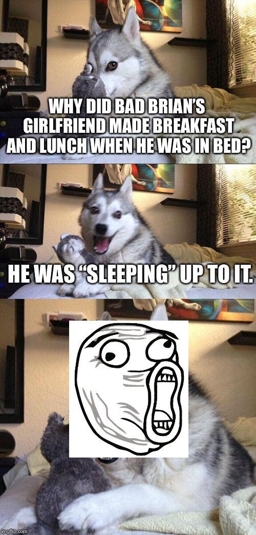 "Bad Pun Dog Meme | WHY DID BAD BRIAN'S GIRLFRIEND MADE BREAKFAST AND LUNCH WHEN HE WAS IN BED? HE WAS ""SLEEPING"" UP TO IT. 