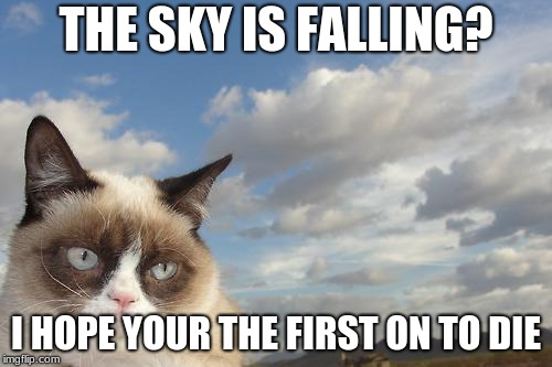 Hey! Thats not me! completely grumpy cat! | THE SKY IS FALLING? I HOPE YOUR THE FIRST ON TO DIE | image tagged in memes,grumpy cat sky,grumpy cat | made w/ Imgflip meme maker