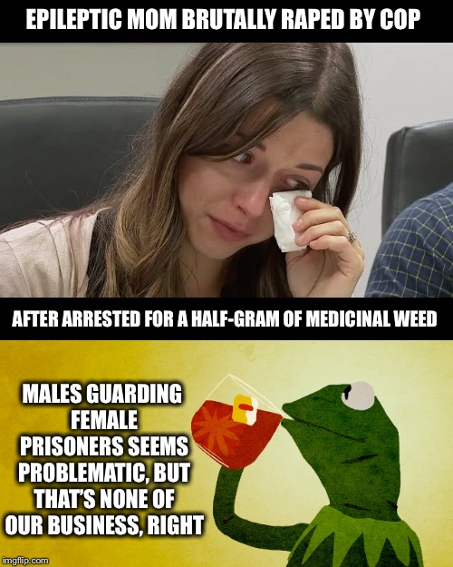 Seems Obvious To Me | EPILEPTIC MOM BRUTALLY **PED BY COP AFTER ARRESTED FOR A HALF-GRAM OF MEDICINAL WEED MALES GUARDING FEMALE PRISONERS SEEMS PROBLEMATIC, BUT  | image tagged in police brutality,guards,rape,medical marijuana,kermit tea,males | made w/ Imgflip meme maker