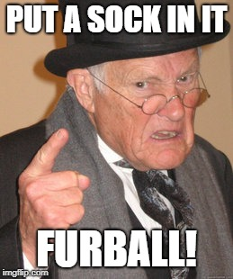 Back In My Day Meme | PUT A SOCK IN IT FURBALL! | image tagged in memes,back in my day | made w/ Imgflip meme maker
