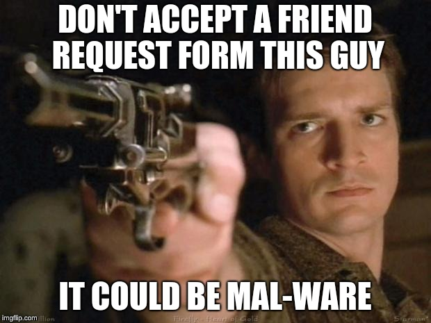 Firefly | DON'T ACCEPT A FRIEND REQUEST FORM THIS GUY IT COULD BE MAL-WARE | image tagged in firefly | made w/ Imgflip meme maker