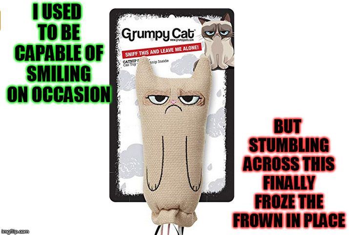 Grumpy Cat Weekend, a Socraziness_all_the_way event, Oct 5-8 | I USED TO BE CAPABLE OF SMILING ON OCCASION BUT STUMBLING ACROSS THIS FINALLY FROZE THE FROWN IN PLACE | image tagged in grumpy cat,toy | made w/ Imgflip meme maker