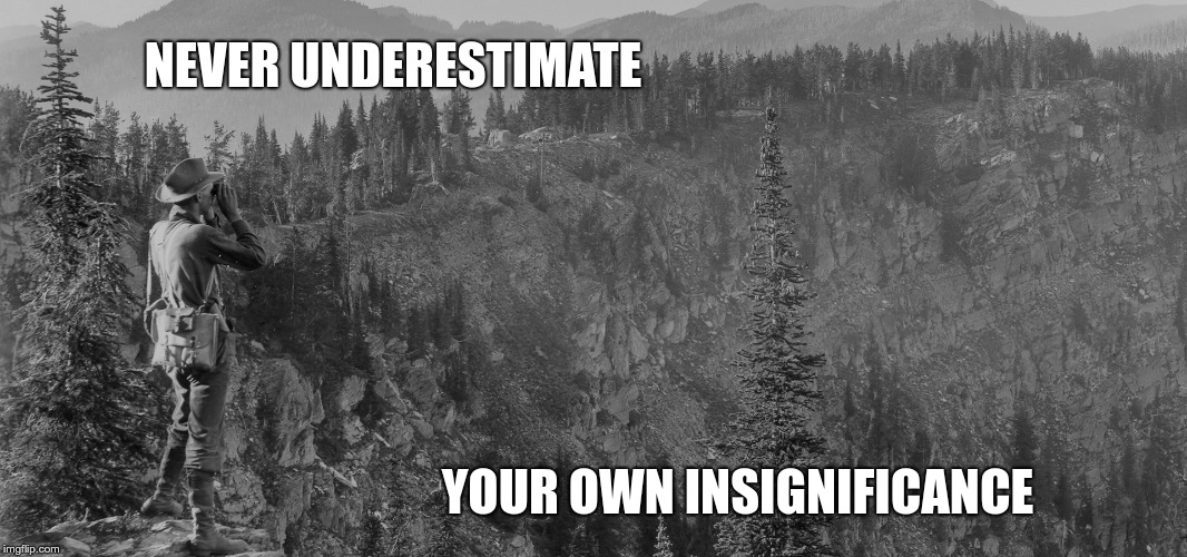NEVER UNDERESTIMATE YOUR OWN INSIGNIFICANCE | image tagged in spiritual,demotivationals,humble | made w/ Imgflip meme maker