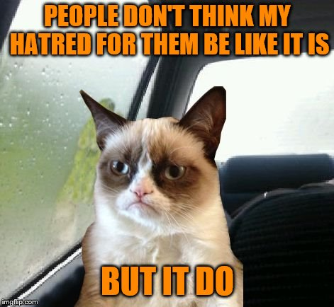 Grumpy must have a soft side, right? | PEOPLE DON'T THINK MY HATRED FOR THEM BE LIKE IT IS BUT IT DO | image tagged in introspective grumpy cat,memes,people don't think it be like it is but it do,hatred | made w/ Imgflip meme maker
