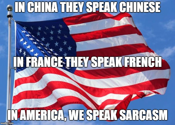 The language barrier is a real problem. | IN CHINA THEY SPEAK CHINESE IN AMERICA, WE SPEAK SARCASM IN FRANCE THEY SPEAK FRENCH | image tagged in america,meme,funny,language | made w/ Imgflip meme maker