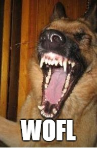 Laughing Dog | WOFL | image tagged in laughing dog | made w/ Imgflip meme maker