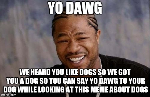 Yo Dawg Heard You Meme | YO DAWG WE HEARD YOU LIKE DOGS SO WE GOT YOU A DOG SO YOU CAN SAY YO DAWG TO YOUR DOG WHILE LOOKING AT THIS MEME ABOUT DOGS | image tagged in memes,yo dawg heard you | made w/ Imgflip meme maker