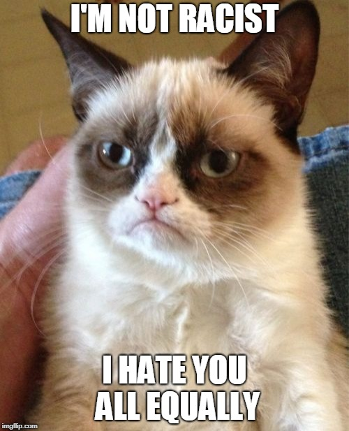 Grumpy Cat Meme | I'M NOT RACIST I HATE YOU ALL EQUALLY | image tagged in memes,grumpy cat | made w/ Imgflip meme maker