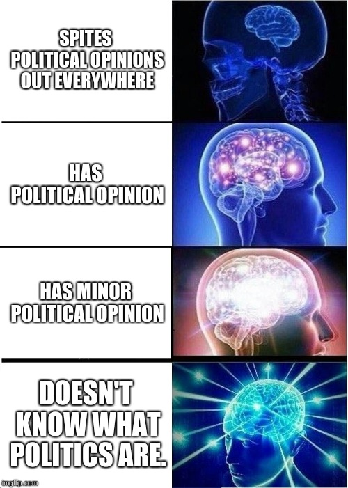Please don't kill me for this meme.  | SPITES POLITICAL OPINIONS OUT EVERYWHERE HAS POLITICAL OPINION HAS MINOR POLITICAL OPINION DOESN'T KNOW WHAT POLITICS ARE. | image tagged in memes,expanding brain | made w/ Imgflip meme maker