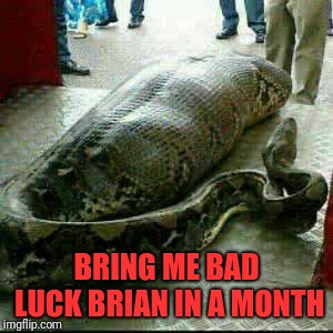 BRING ME BAD LUCK BRIAN IN A MONTH | made w/ Imgflip meme maker