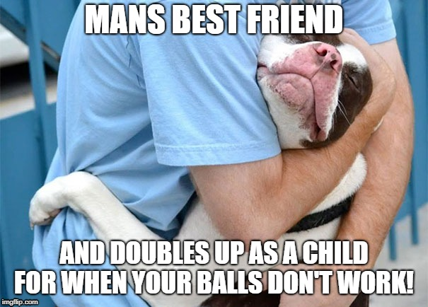 MANS BEST FRIEND AND DOUBLES UP AS A CHILD FOR WHEN YOUR BALLS DON'T WORK! | image tagged in dogs,mans best friend,comedy,hug | made w/ Imgflip meme maker
