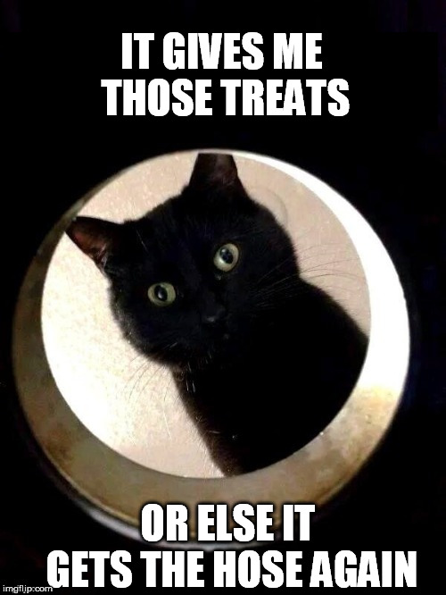 IT GIVES ME THOSE TREATS OR ELSE IT GETS THE HOSE AGAIN | made w/ Imgflip meme maker