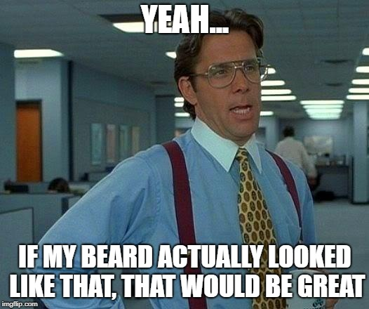That Would Be Great Meme | YEAH... IF MY BEARD ACTUALLY LOOKED LIKE THAT, THAT WOULD BE GREAT | image tagged in memes,that would be great | made w/ Imgflip meme maker